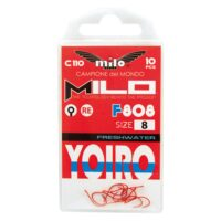 AMI YOIRO F808 Re MILO (10pz)